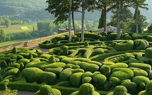 vacance dordogne jardin Marqueyssac