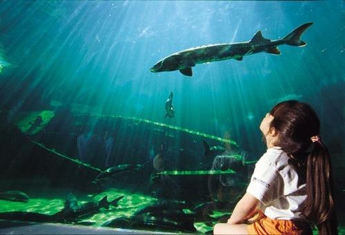 vacance dordogne aquarium perigord