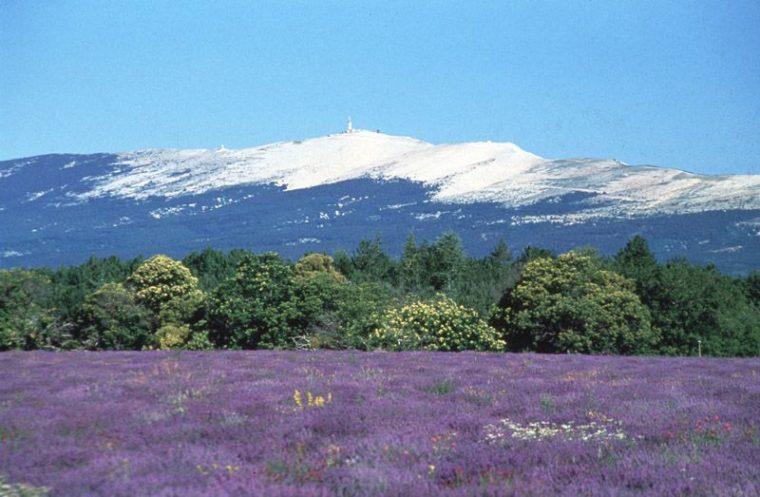Le Mont Ventoux en Provence